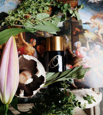 Дьявольская красота: Колдовские ароматы для женщин-вамп-430x480