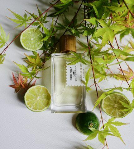 Заводной апельсин: 4 аромата с витамином С-430x480