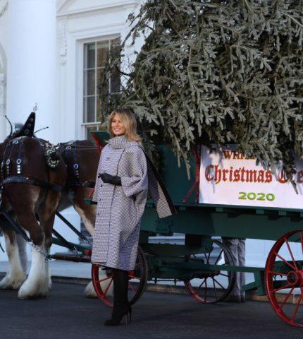 Мелания Трамп в последний раз украсит Белый дом к Рождеству-430x480