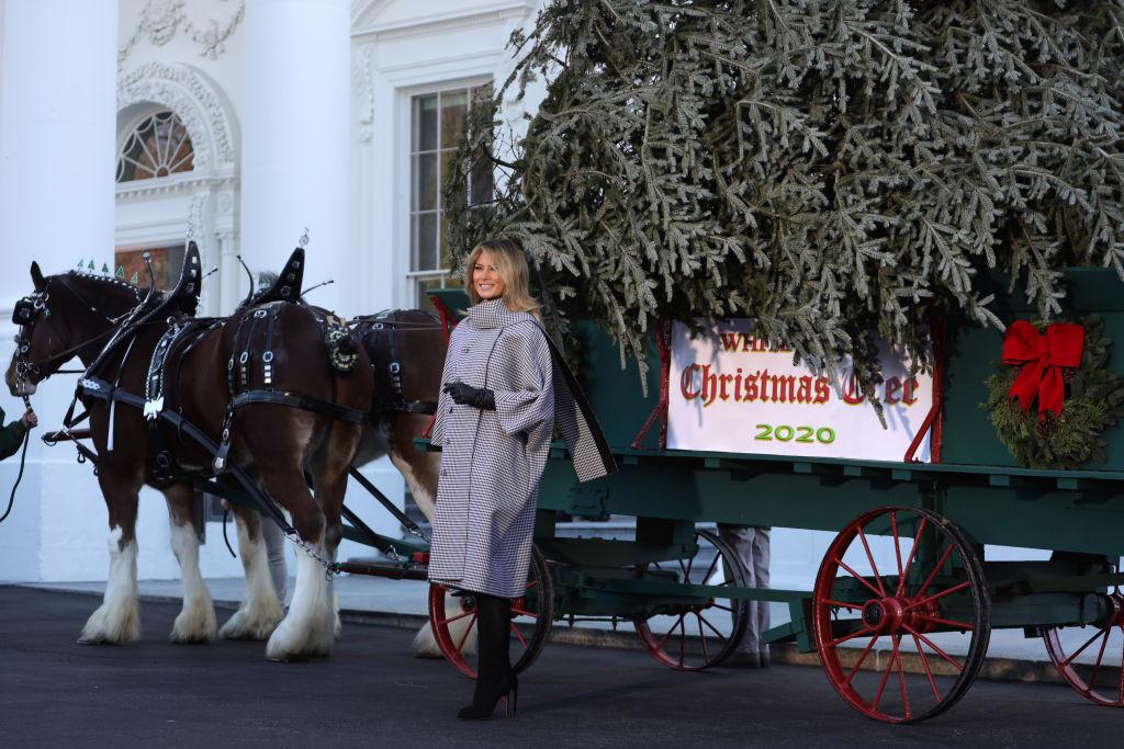 Мелания Трамп в последний раз украсит Белый дом к Рождеству-Фото 1