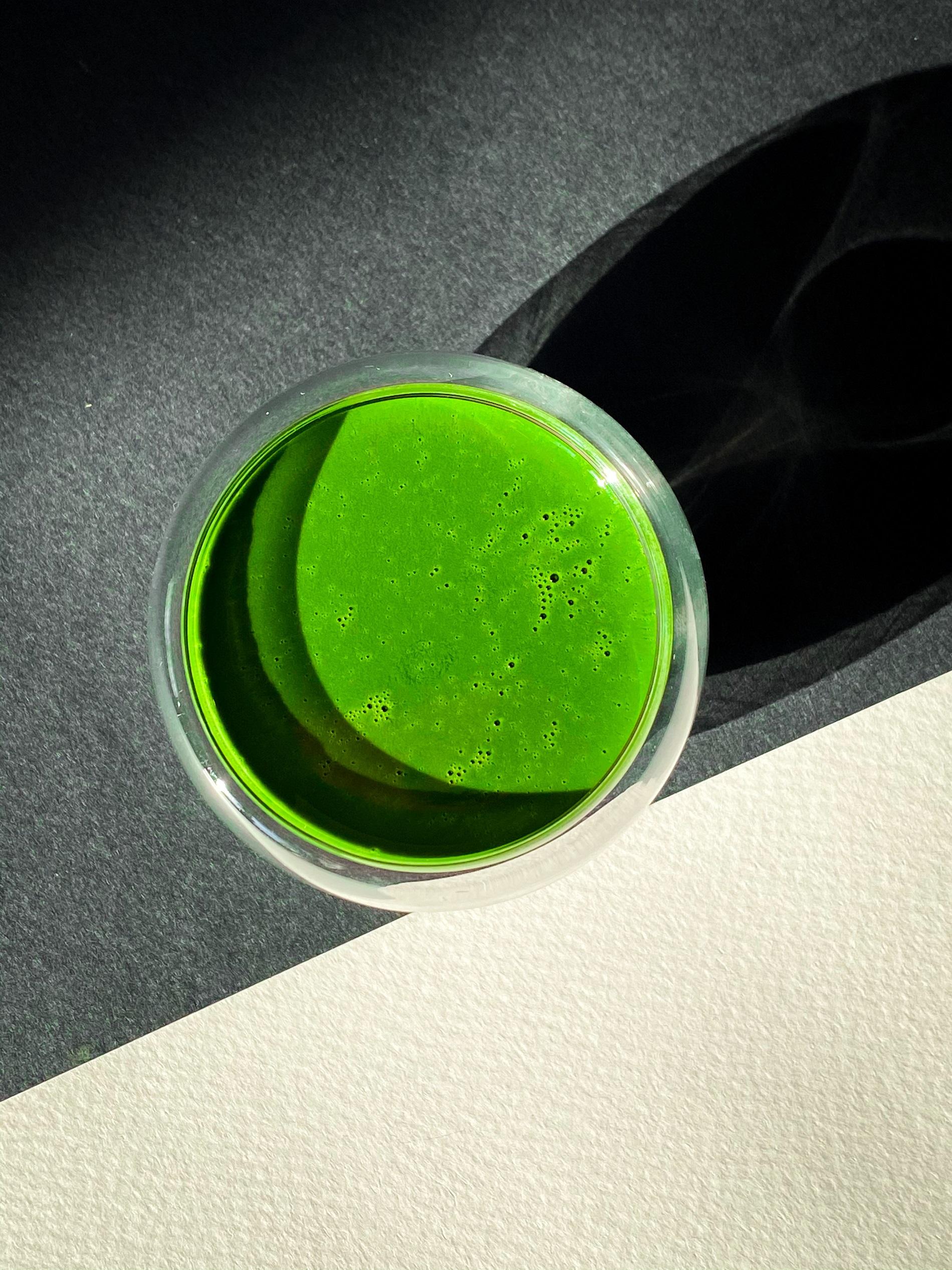 Матча — чудо-напиток: все о самом популярном зеленом чае на сегодня.-Фото 4