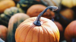 Осенне-зимний сезон: какие продукты питания не стоит игнорировать-320x180