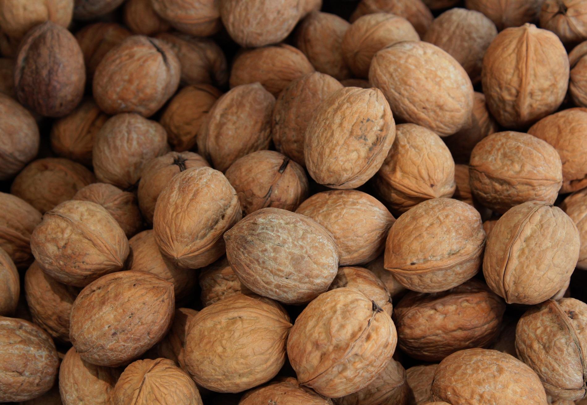 Осенне-зимний сезон: какие продукты питания не стоит игнорировать-Фото 4