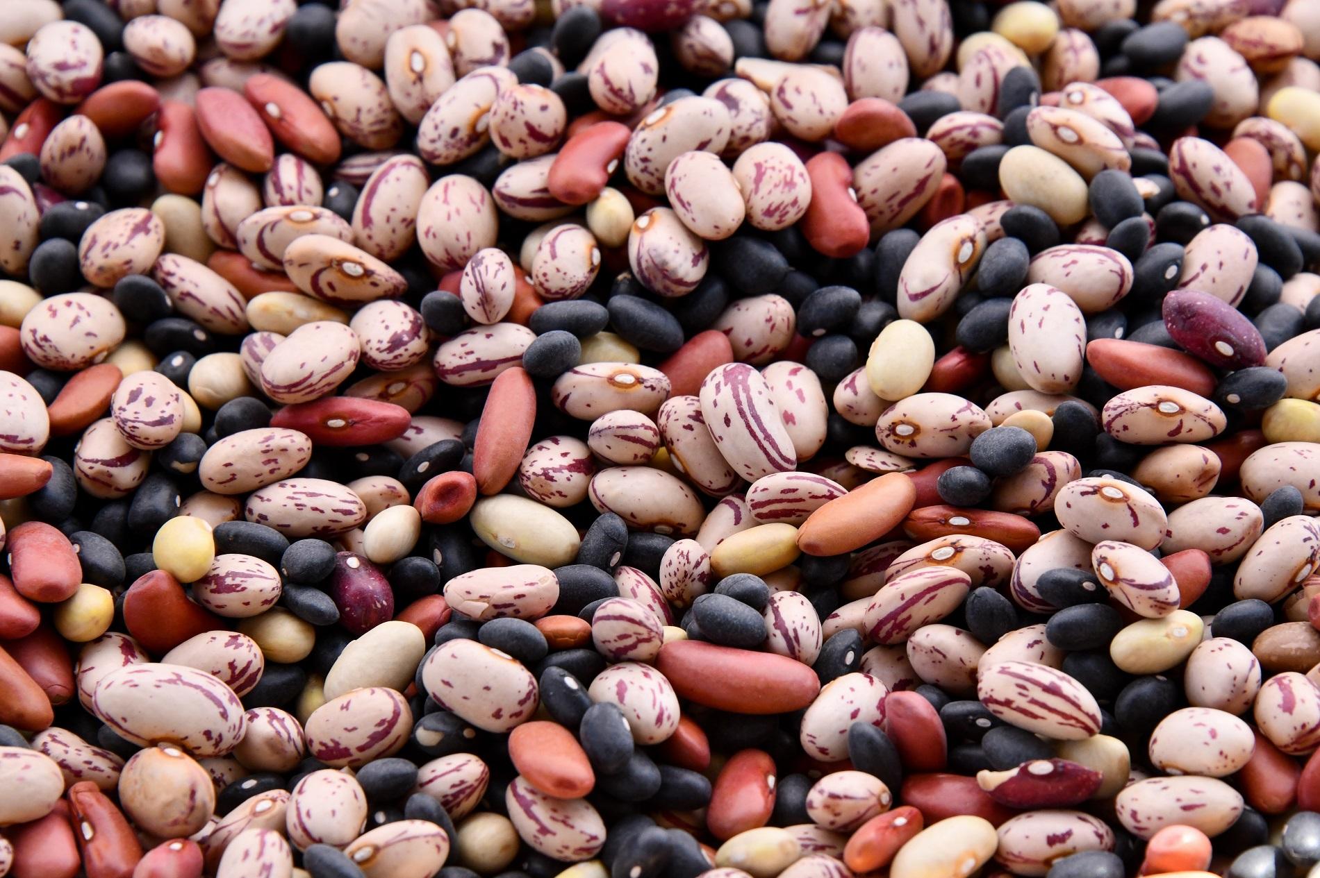 Осенне-зимний сезон: какие продукты питания не стоит игнорировать-Фото 5