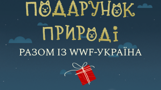 В новорічні свята українці можуть зробити подарунок природі разом з WWF-Україна-320x180