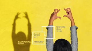 Назван главный цвет 2021 года по версии Pantone-320x180