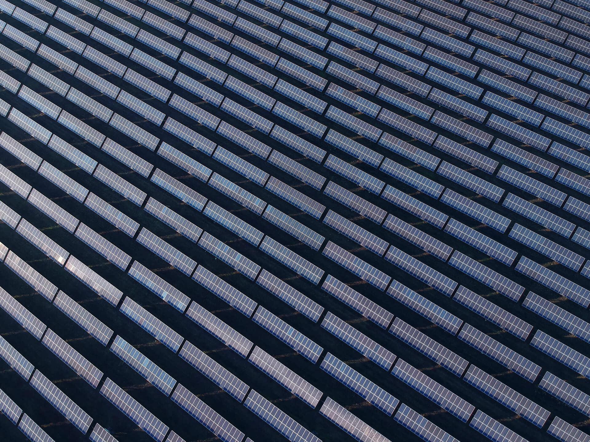 Сонячна електростанція неподалік Новомосковська (Подніпров'я та Запоріжжя) — одна з найбільших у Європі. 25 жовтня 2020 року. Фото: Сергій Свердєлов.
