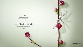 Архівна виставка Van Cleef & Arpels відкривається 3 лютого у столичному NAMU-320x180