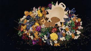 NADIIA X PEPPEROSE STUDIO представляют коллекцию керамики, вдохновленную работами Катерины Белокур-320x180