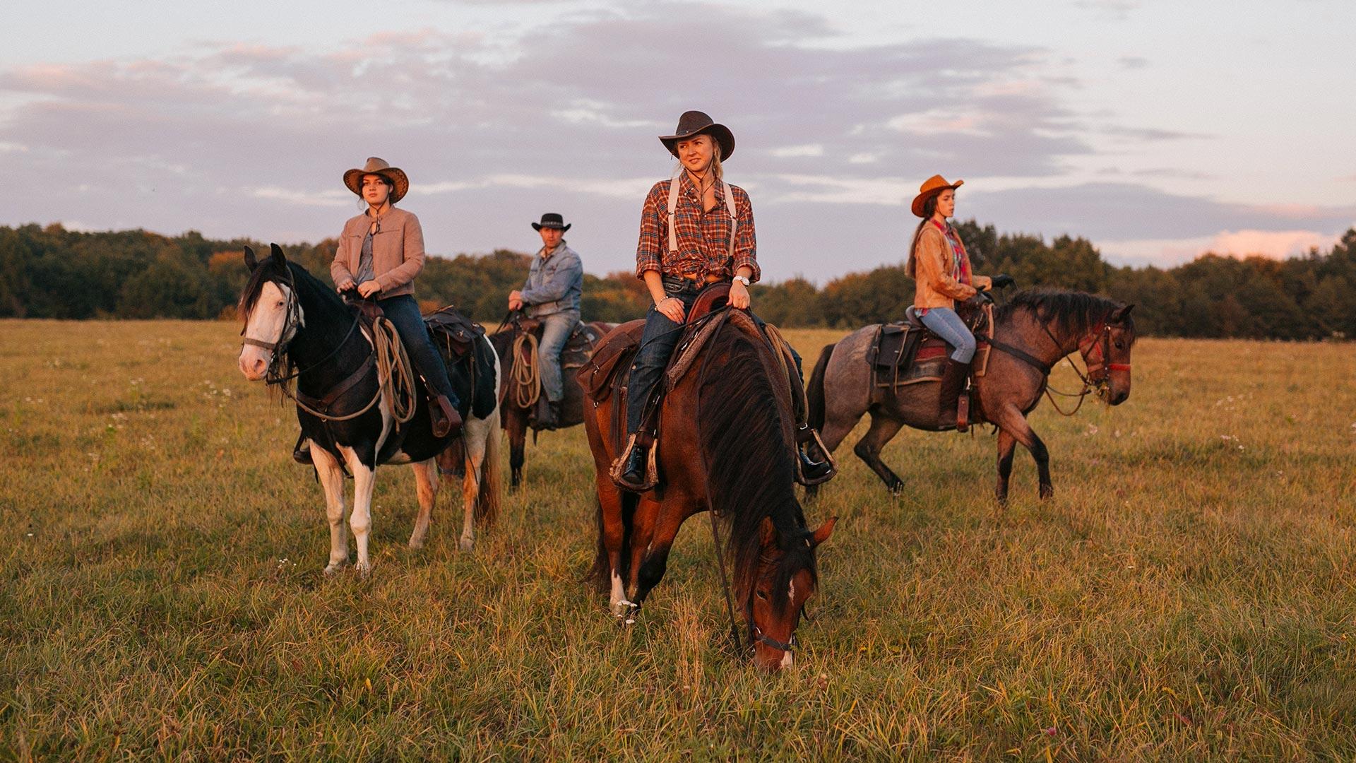 Об'їхати Америку і побудувати власне ранчо на Галичині-Фото 1