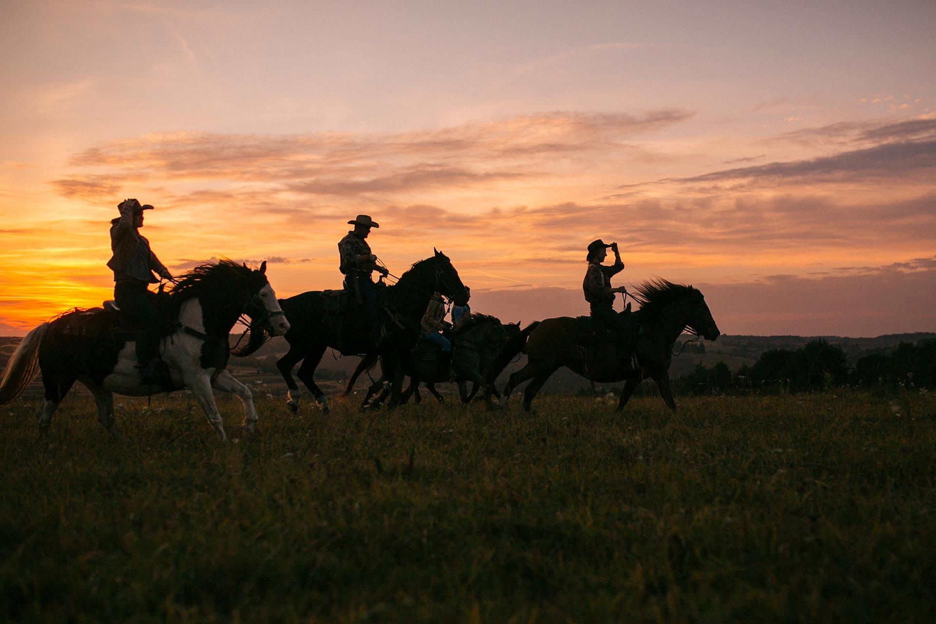 Об'їхати Америку і побудувати власне ранчо на Галичині-Фото 10