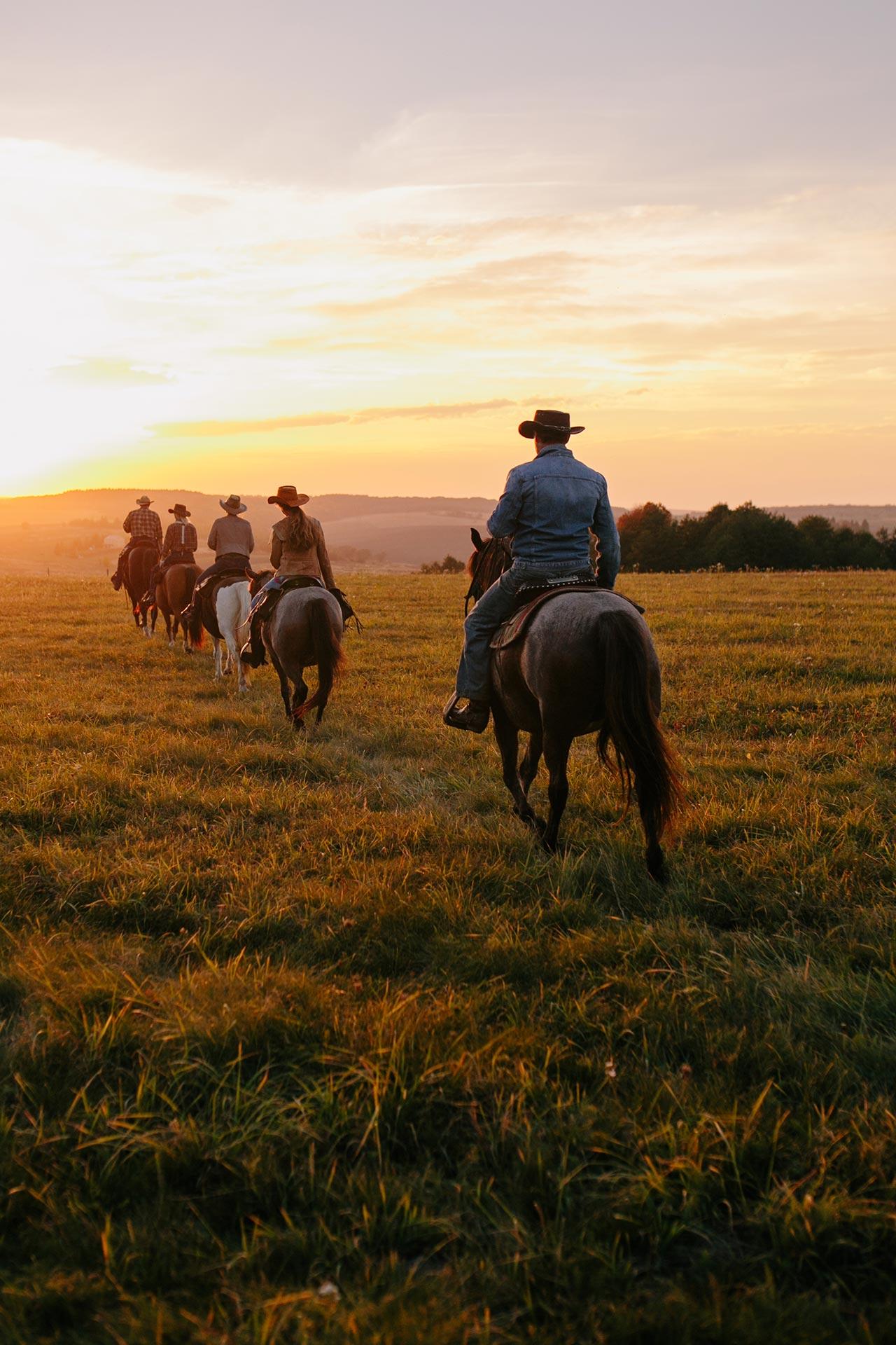 Об'їхати Америку і побудувати власне ранчо на Галичині-Фото 2