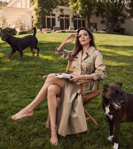 """Анджелина Джоли рассказала о трудностях последних лет, и """"выздоровлении"""" ее семьи-430x480"""