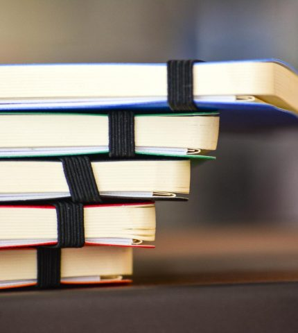 5 стадий, которые проходит каждый, кто учит английский-430x480