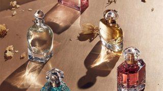 Защищено: Новинки парфюмерии 2021 года: духи и ароматы мировых брендов-320x180