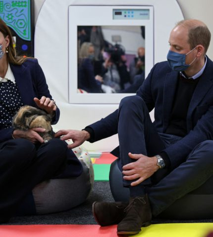 Кейт Миддлтон и принц Уильям появились на публике в парном образе-430x480