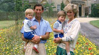 Принц Гарри обвинил отца в неправильном воспитании-320x180