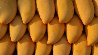 Дело совсем не в косточке: как выбрать манго в магазине-320x180