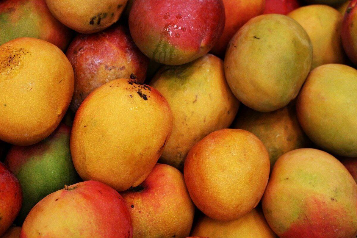 правильно выбираем спелый манго