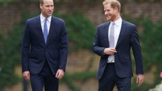 """""""Гарри практически невозможно доверять"""": Какими стали отношения Уильяма и его младшего брата-320x180"""