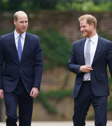 """""""Гарри практически невозможно доверять"""": Какими стали отношения Уильяма и его младшего брата-430x480"""