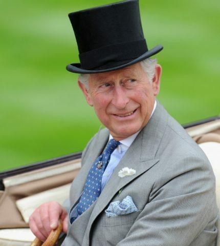 Принц Чарльз назвал любимую американскую актрису и певицу-430x480
