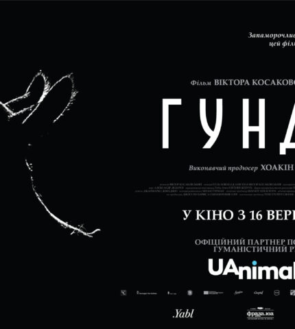 Спродюсований Хоакіном Феніксом документальний фільм про життя свині «Гунда» виходить в український прокат-430x480