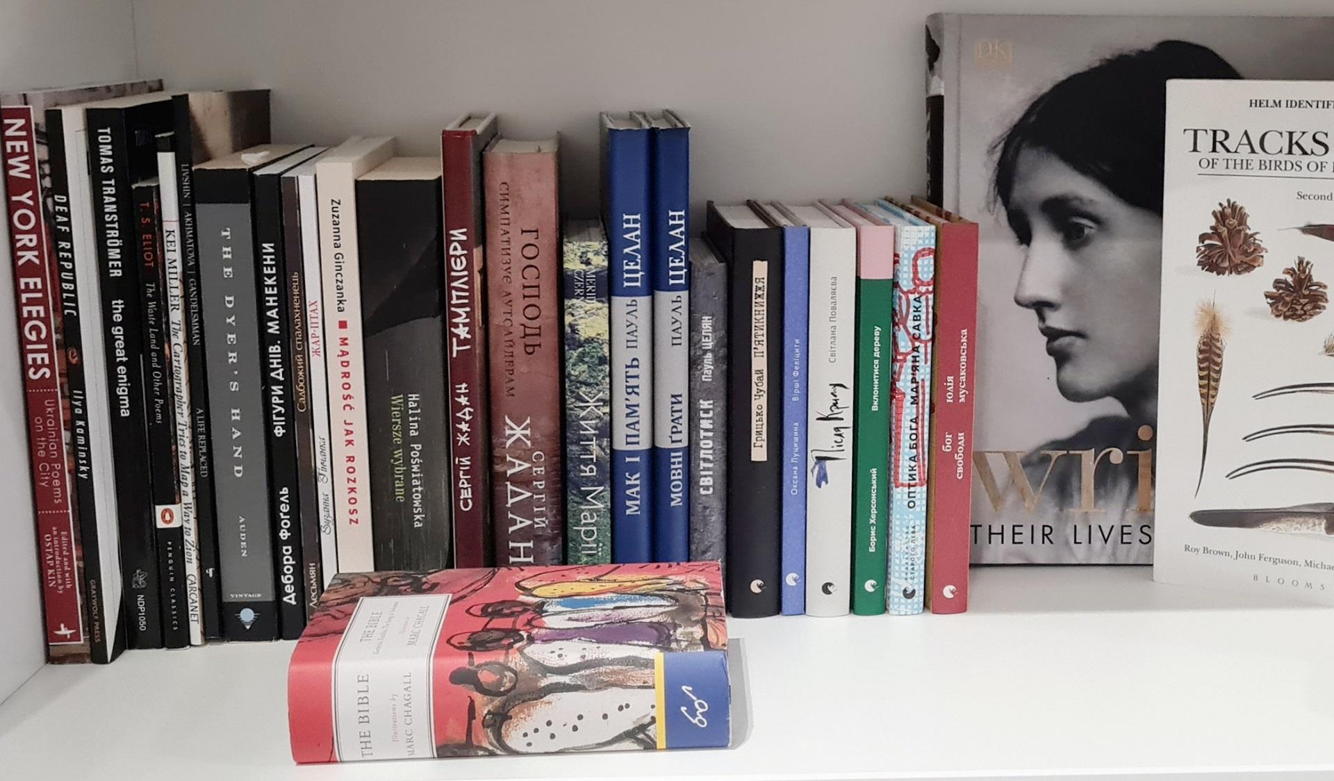 #bookshelfy: Вікторія Амеліна, письменниця, авторка книжок для дорослих та дітей-Фото 3