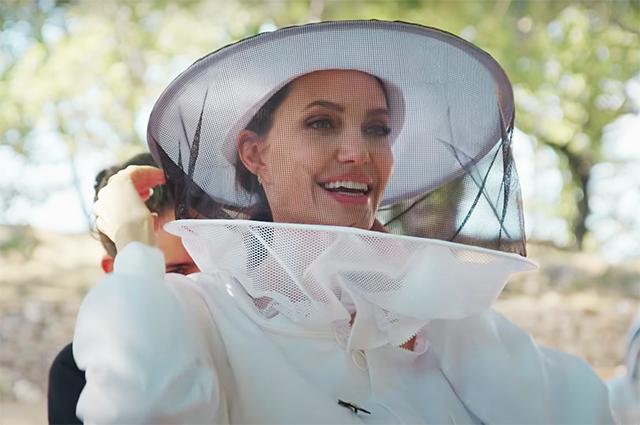 Анджелина Джоли спасает пасеки в Провансе в рамках программы ООН-Фото 1
