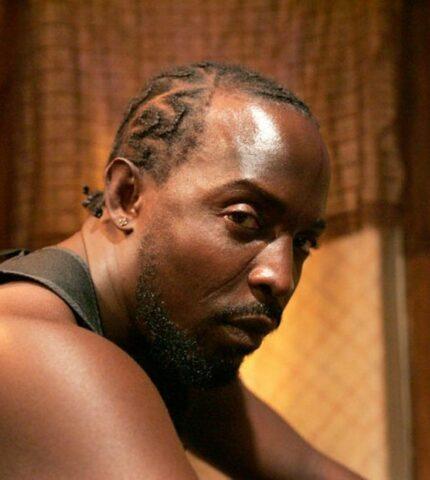 """Погиб актер """"12 лет рабства"""" и """"Подпольной империи"""" Майкл К. Уильямс-430x480"""