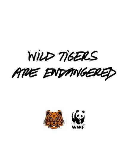 Во благо: KENZO представил капсульную коллекцию с WWF в знак поддержки популяции тигров-430x480