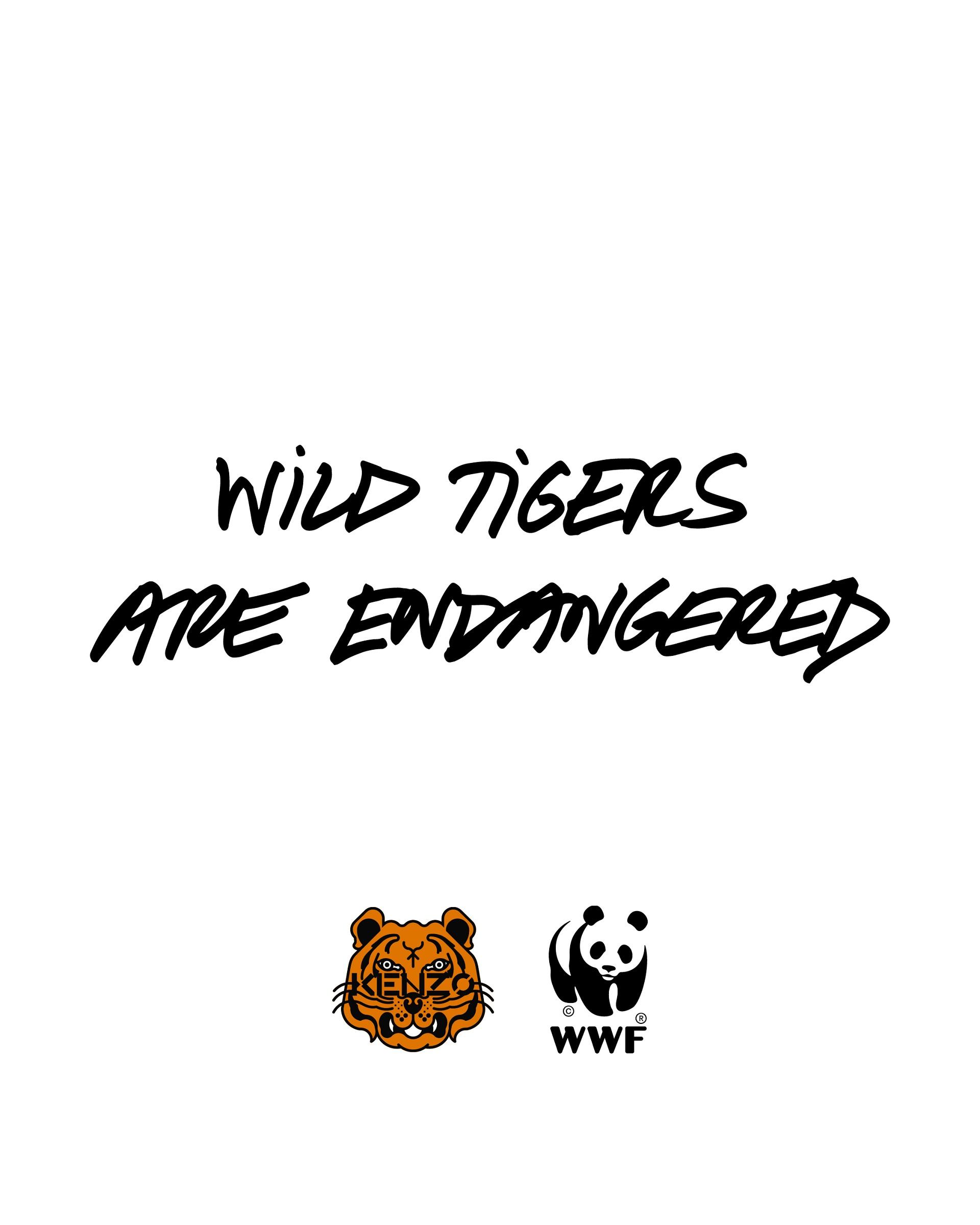 Во благо: KENZO представил капсульную коллекцию с WWF в знак поддержки популяции тигров-Фото 1