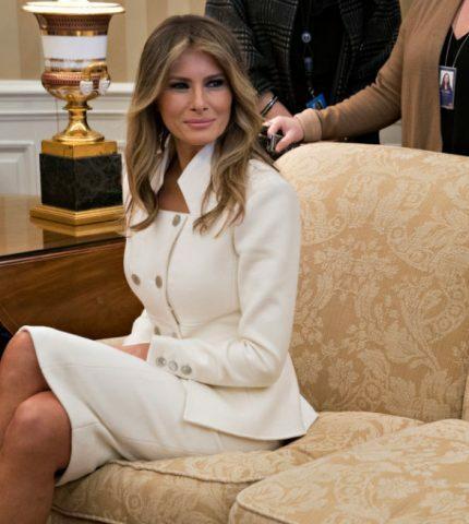Секретная служба Белого дома называла Меланию ТрампРапунцель-430x480