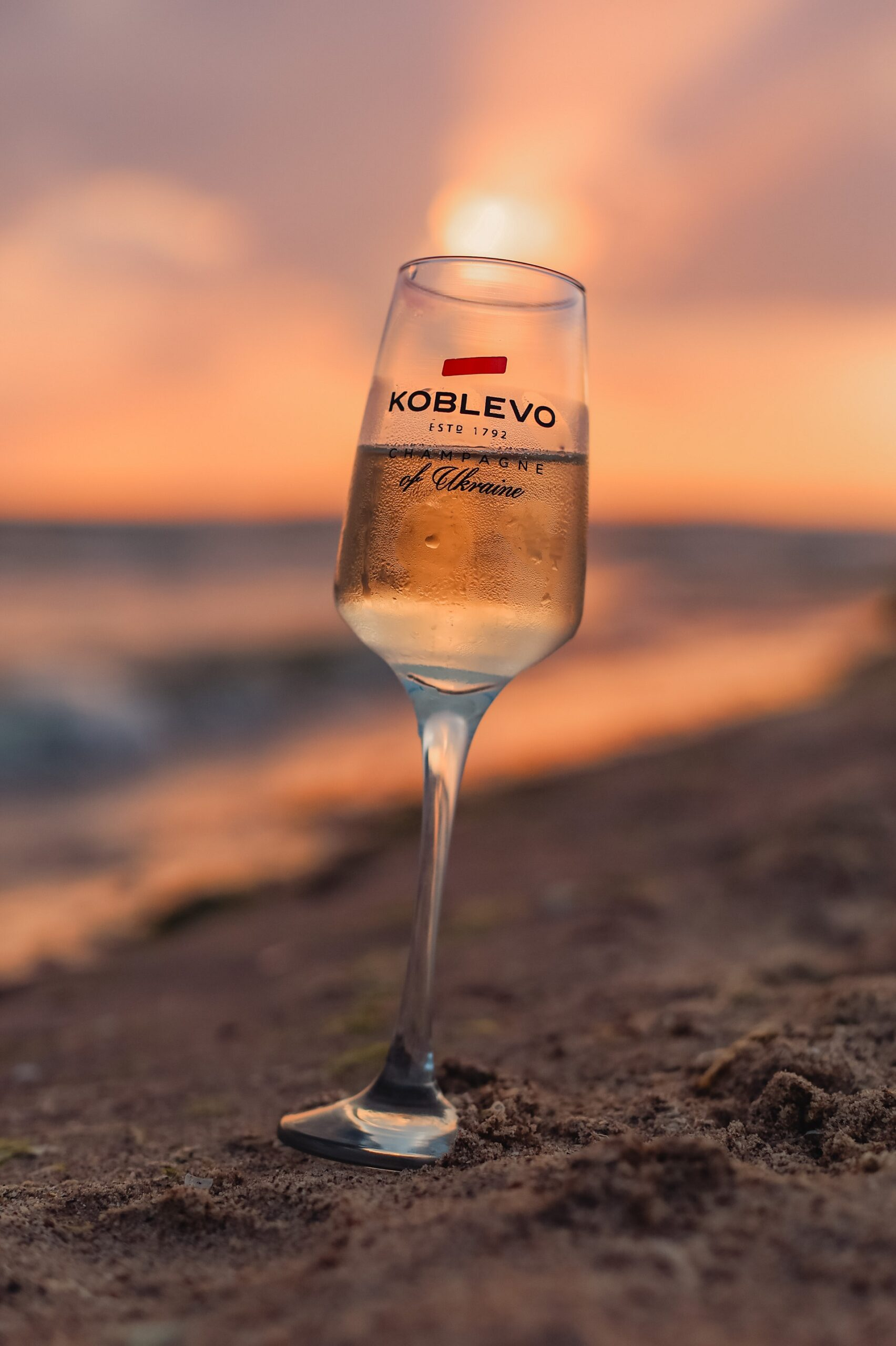 Як це було: Тур-дегустація KOBLEVO Grape Harvesting Tour 2021-Фото 5