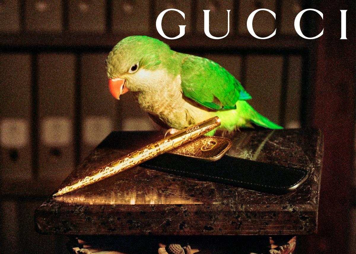 Стиль жизни Gucci: Магия повседневности в новой коллекции канцелярии-Фото 3