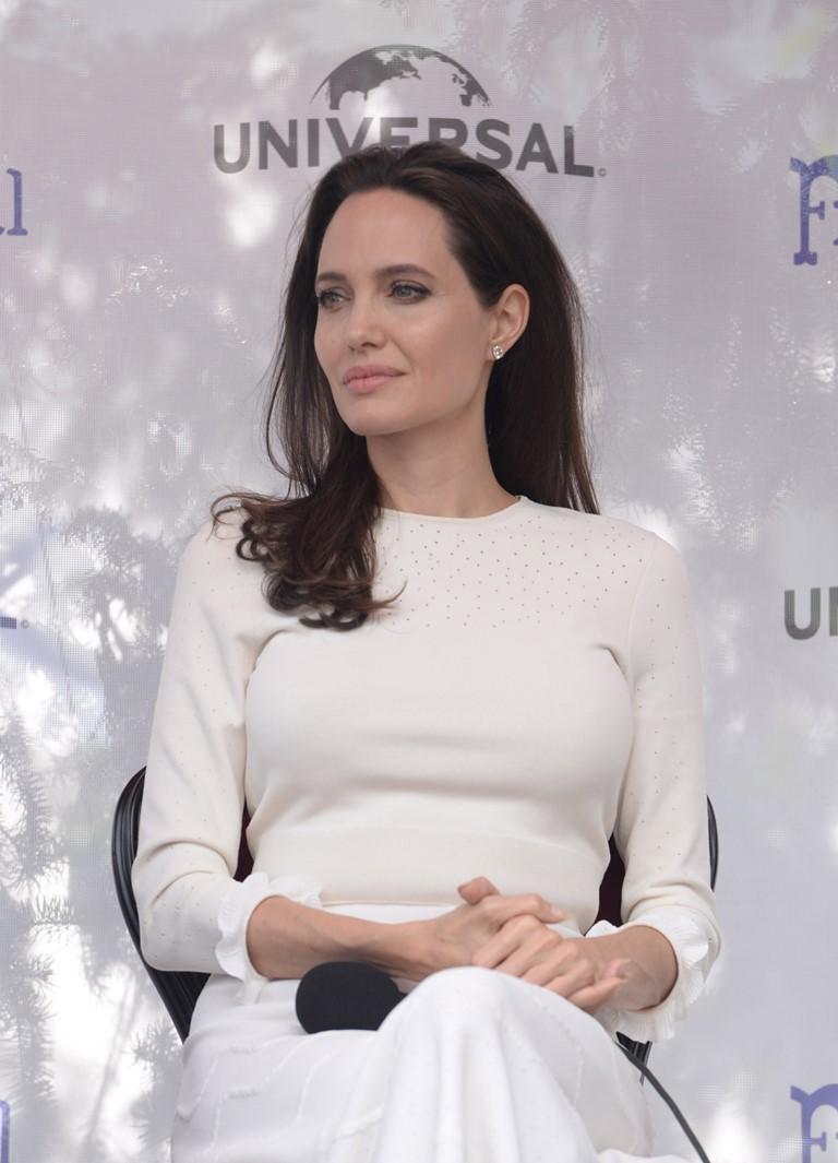 Харви Вайнштейн обвинил Анджелину Джоли в самопиаре после ее заявлений о домогательстве-Фото 2
