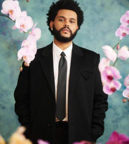 Новое призвание: The Weeknd стал послом Всемирной продовольственной программы ООН-430x480